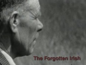 The Forgotten Irish, 2009, TV3